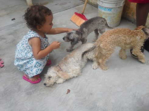 Lucia playing with Nery's puppies, who are far from mistreated